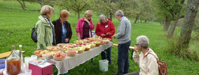 Apfelverkostung