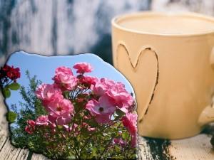 Kaffeeduft und Rosenblüte